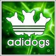 Humorné vtipné svietiace tričko Adidogs s motívom paródie Adidas