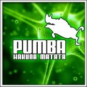 Vtipné svietiace tričko Pumba hakuna Matata, humorné darčeky pre deti